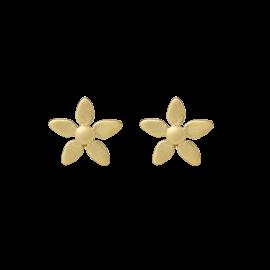 byBiehl Forget Me Not Gold Earrings 4-003-GP