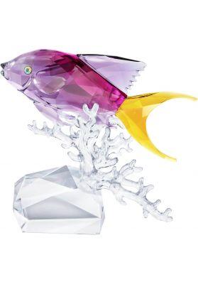 Swarovski Crystal Anthias Fish