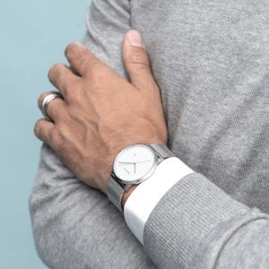 Bering Unisex Classic Brushed Silver Watch