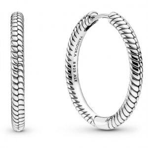 Pandora Moments Charm Hoop Earrings-299532C00