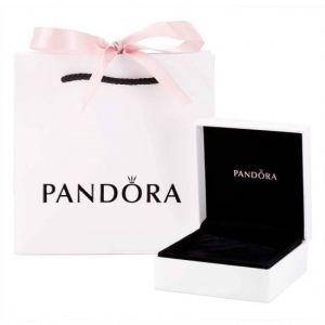Pandora Moments Slider Silver Bangle