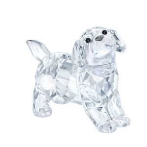 Swarovski Labrador Puppy, Standing, Clear