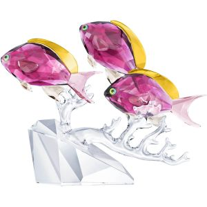 Swarovski Crystal Anthias Fish Trio