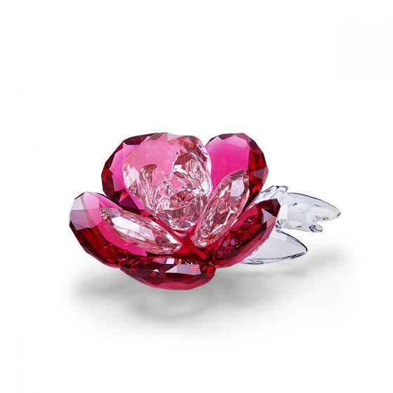 Swarovski Crystal Flowers Peony 5493711