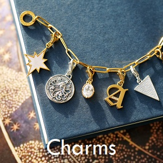 Shop Thomas Sabo Charms Online