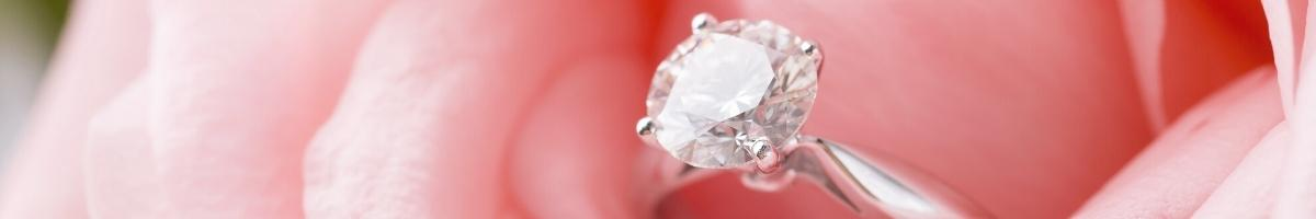 Engagement Rings at Niche Jewellery